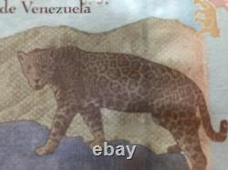 Venezuela Bolivares Set of Muestra Sin Valor (8)Banknotes AU/UNC Rare